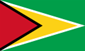 Flag_of_Guyana_svg