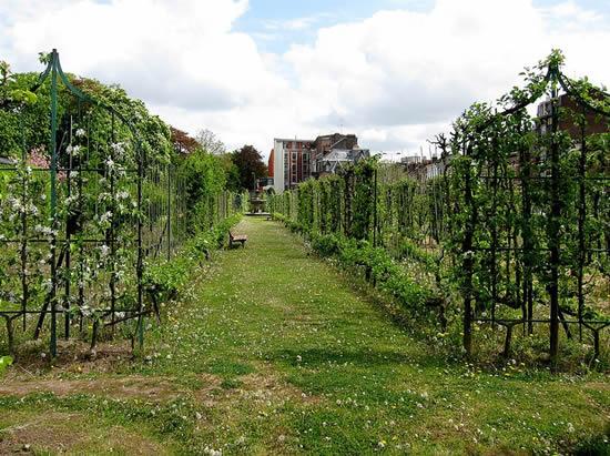Floriculteur floriculture wuacademia cole distance - Le jardin champetre magog lille ...
